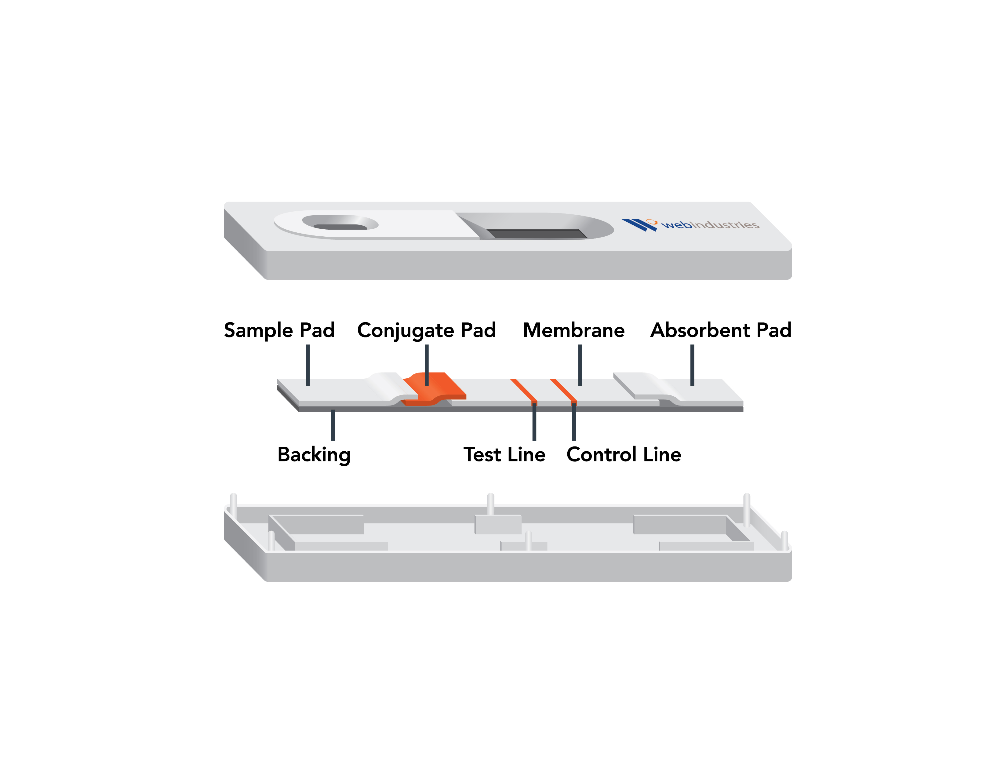 lateral flow immunoassay (LFI) device courtesy Web Industries