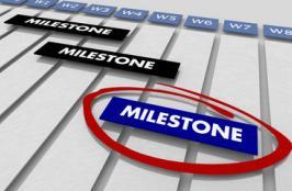Cardiovalve Reaches 2 Milestones for its Tricuspid Valve Replacement System