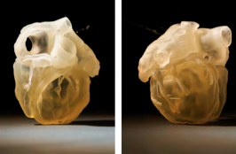 Medical Models Fully Replicate the Feel, Responsiveness, and Biomechanics of Human Anatomy