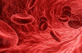 Blood Test Gives Greater Insight on Heart Attack Risk After Surgery