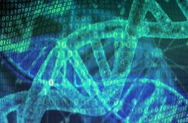 Tiny Circuits Made of DNA Used for Cancer Detection
