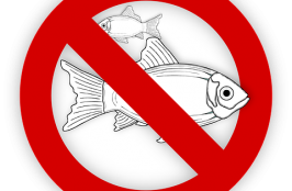 Are Fish Allergy Tests Unreliable?