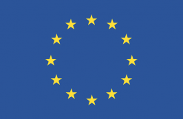 An Update on ISO 11607 and EU MDR