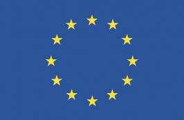 Proposal to Postpone EU Medical Device Regulation Underway