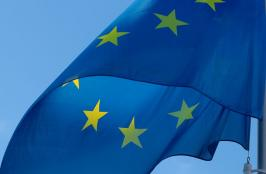 Widespread Concern Over Europe's Uncertain Regulatory Future Highlights Region's Importance