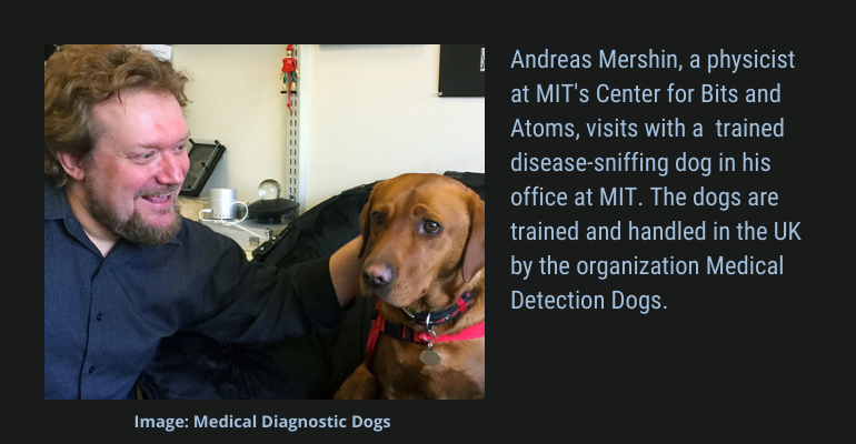 disease-sniffing dog