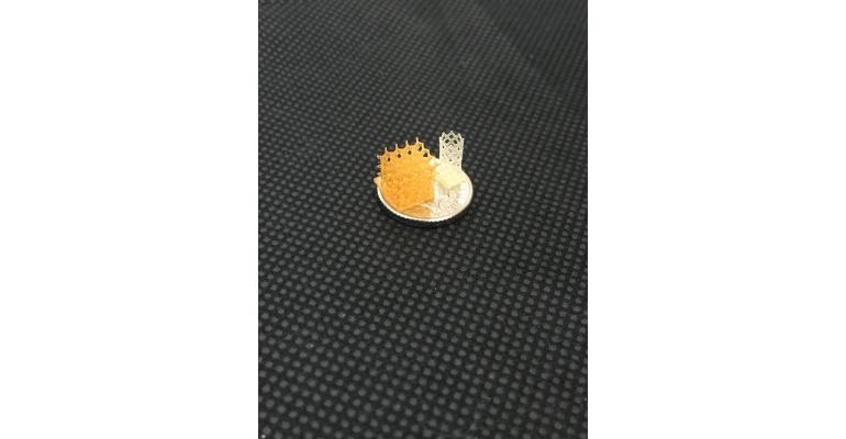 Sample scaffold from 4D Biomaterials_online.JPG