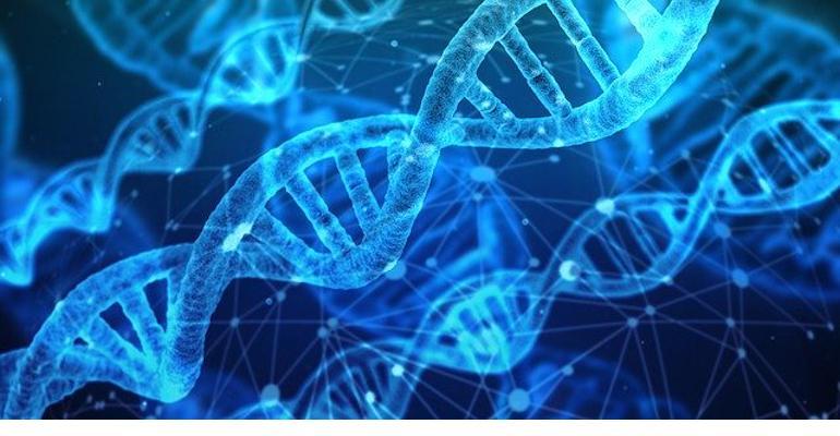 Inherent Biosciences