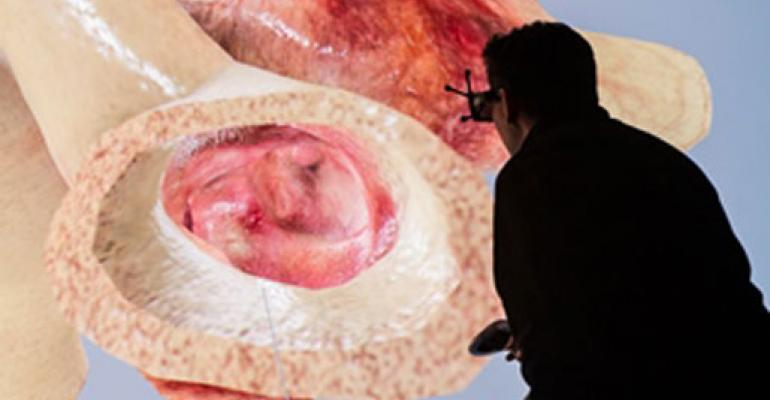 3-D Digital Continuity Is the Future of Human Health
