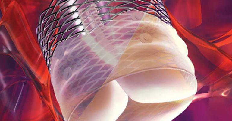 Will Boston Scientific Be Too Late To TAVR Party?