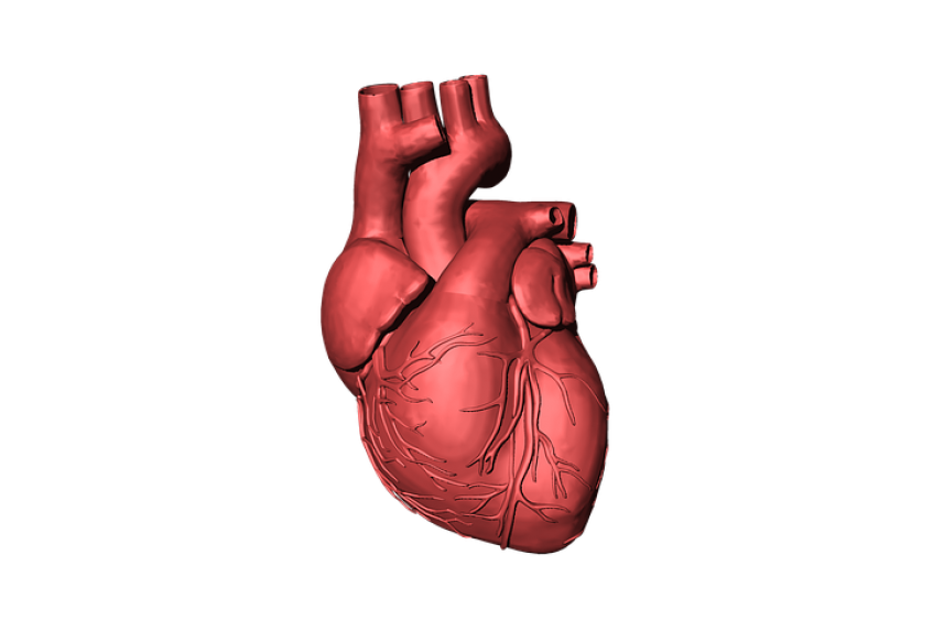 SQI Test Detects Heart Attack Before It Happens | MDDI Online