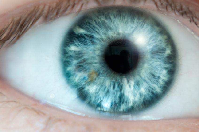 Genentech Betting on a Device Approach to a Blockbuster Ophthalmic