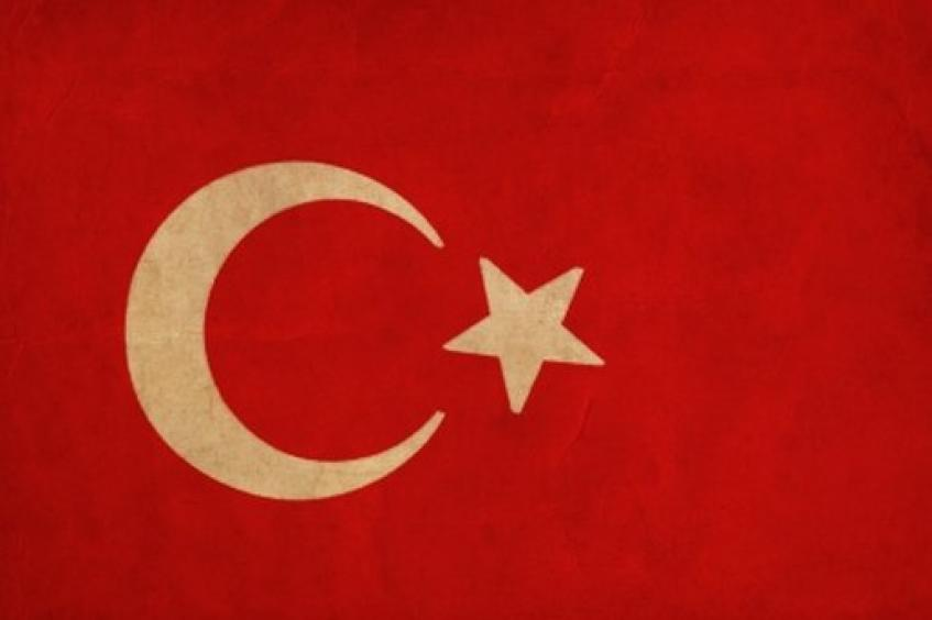 Accessing Turkey's Medical Device Market | MDDI Online