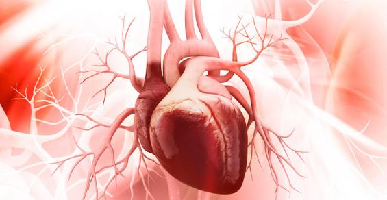 HeartFlow Moves Forward in PRECISE Trial