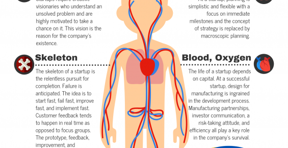 The Anatomy of a Medical Device Startup