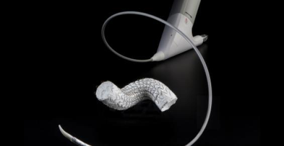 Gore Scores FDA Nod for More Precise TEVAR Solution