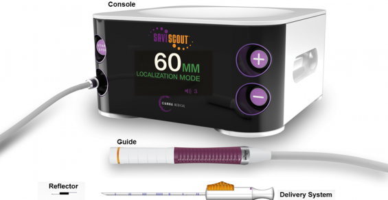 Scout Marks the Spot in Soft Tissue for Cancer Treatment