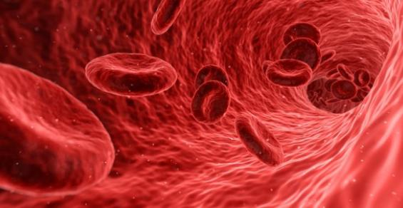 Changes in the Blood Could Hold Key for Better Alzheimer's Detection