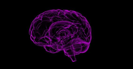 Tiny Implant Can Control Neural Circuits in the Brain via Smartphone