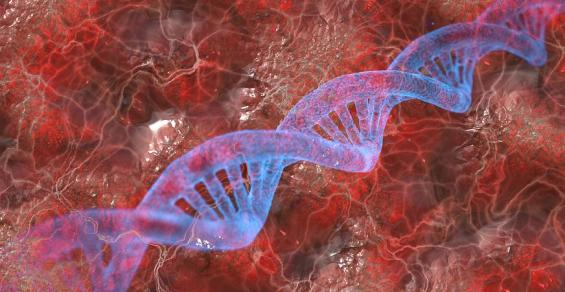 Deal Helps Bring Genetic Information to Mainstream Medicine