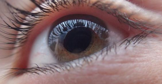 Study Shows MIGS Makes up Nearly Half of Glaucoma Surgical Device Revenue
