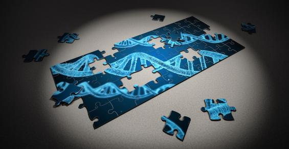 How Google is Helping Make Sense of Your Genome