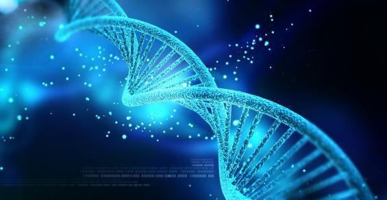 Could DNA Help Doctors Predict Opioid Addiction?
