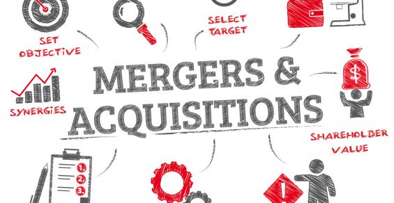 Considering Market Access Risk as Part of Today's M&A Process