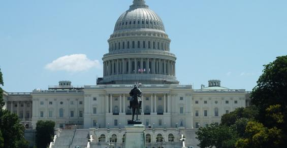 What Can Medtech Expect with the New Congress?
