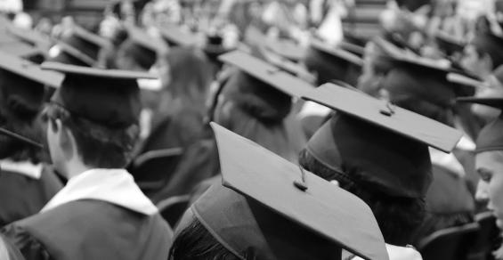 Best Bargain Schools for Biomedical Engineering