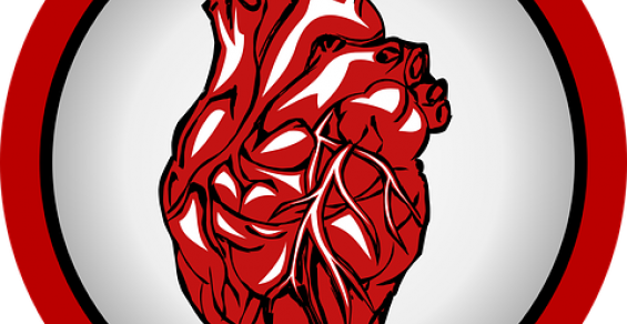 10 of the Most Influential Companies in the Cardiovascular Space